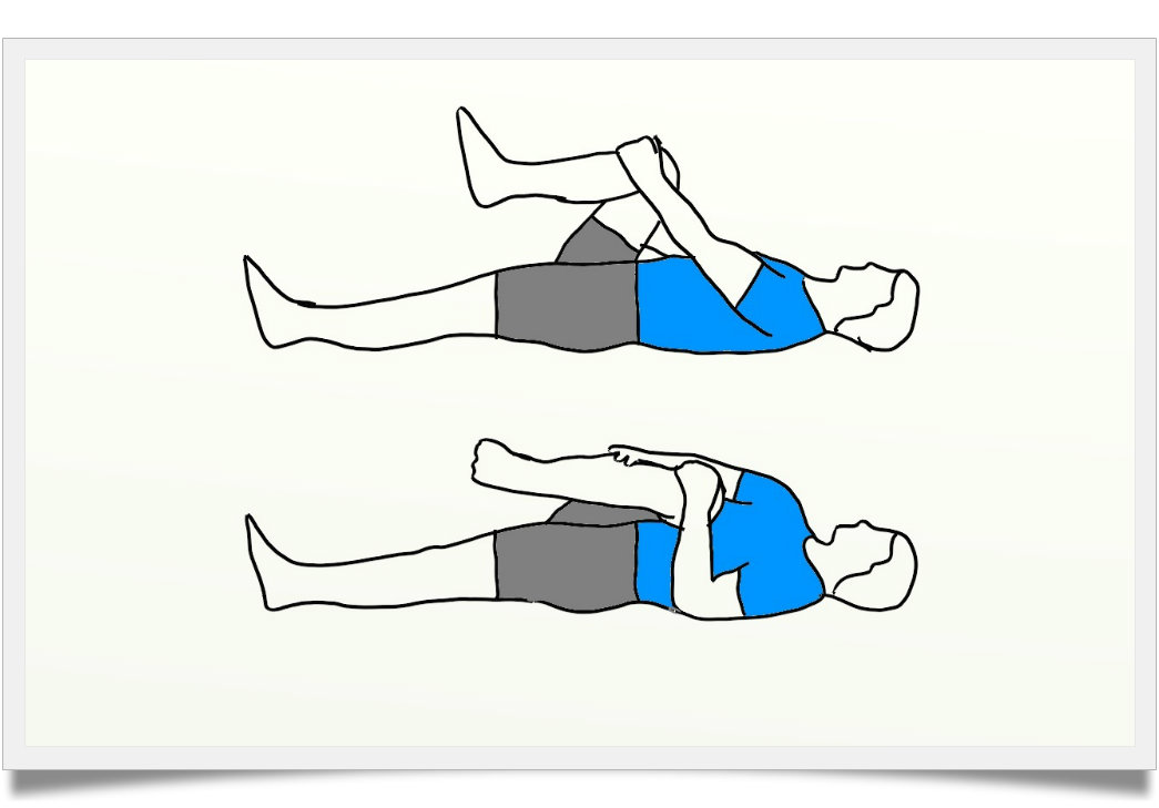Exercises   True Health Studio